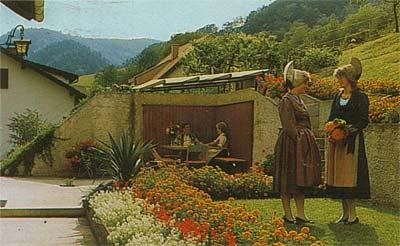 """Haus """"Donaublick"""" - Garten"""